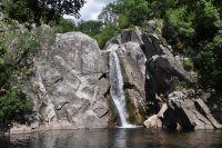 Paranesti: Wald, soweit das Auge reicht