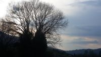 Das Wetter im März : außen hui, innen pfui