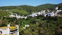 Agapi, Alois und der Rausch der Sinne – eine Urlaubsgeschichte auf Tinos