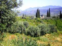 Trizinia auf der Peloponnes: Traumhafte Landschaft, spannende Mythen und Archäologie