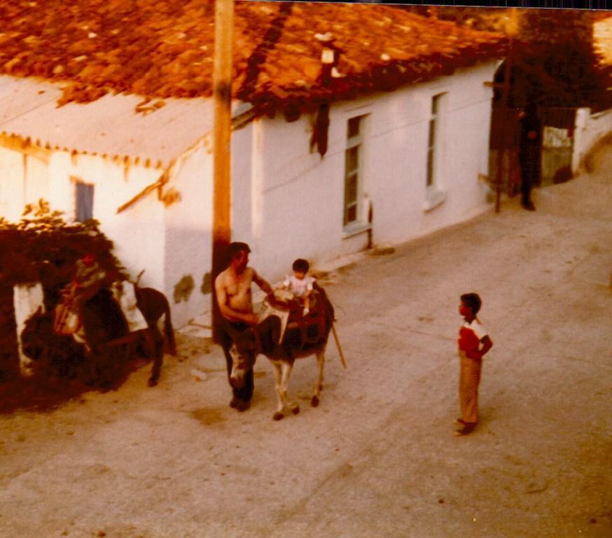 Alistrati 1981 small4