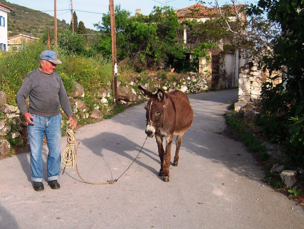Senioren beim Spaziergang small
