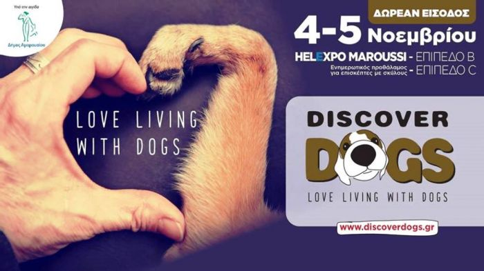 Discover Dogs Festival 2017