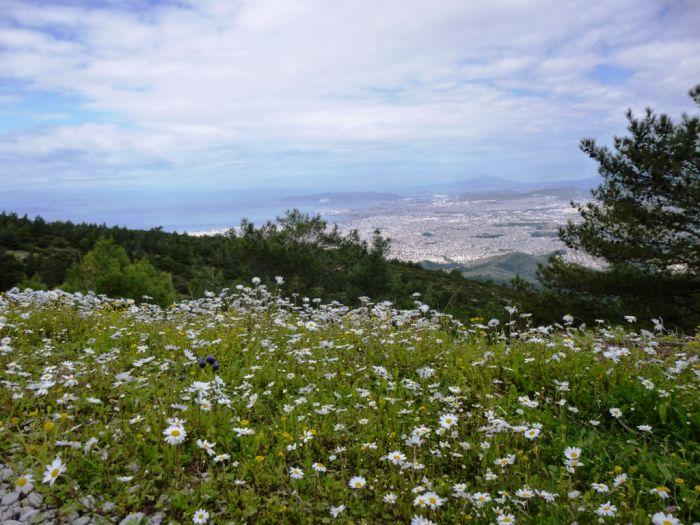 Das Wetter in Griechenland: Sonne, Schnee und Regen